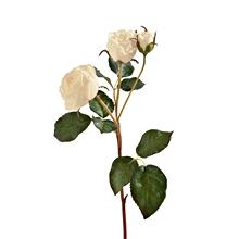 多头厄瓜多尔仿真玫瑰花
